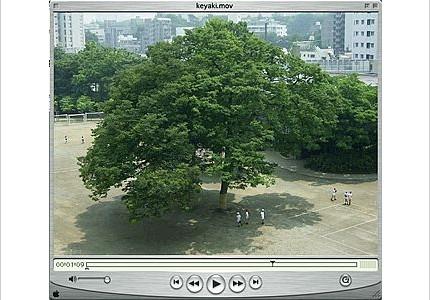 03_tlg2003_12.jpg