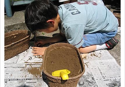 04_soil_06.jpg