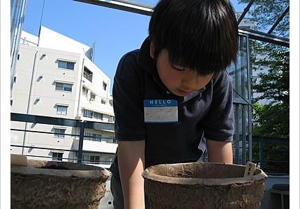04_soil_10.jpg