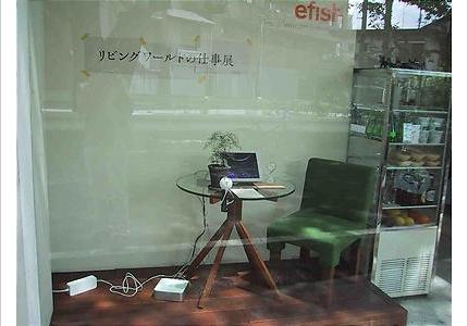 06_efish_02.jpg